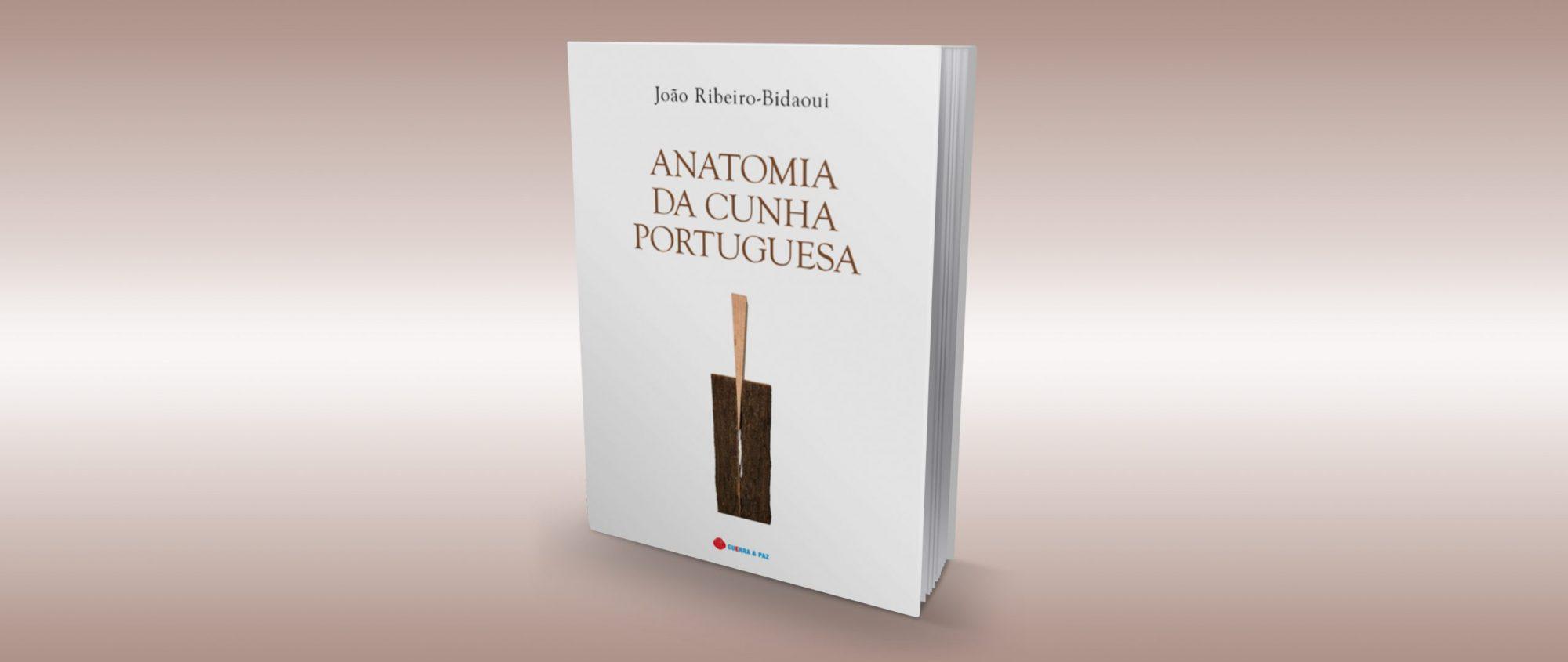 Boletim da OA | Anatomia da cunha