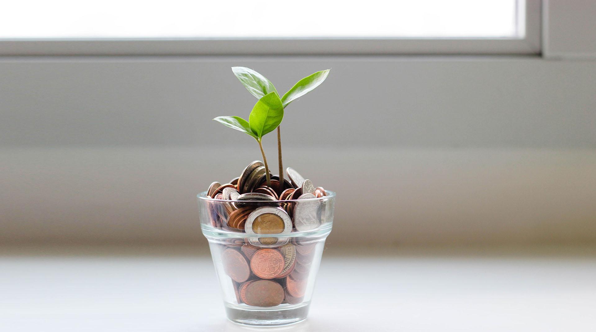 Boletim OA - discutir - Sitemas financeiros ©MicheileHenderson - Unsplash